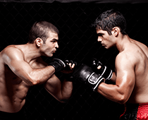 MMA Betting and Strategy
