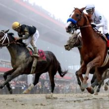 Best Preakness Stakes Betting Odds 2019