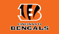 cincinnati bengals nfl season win totals