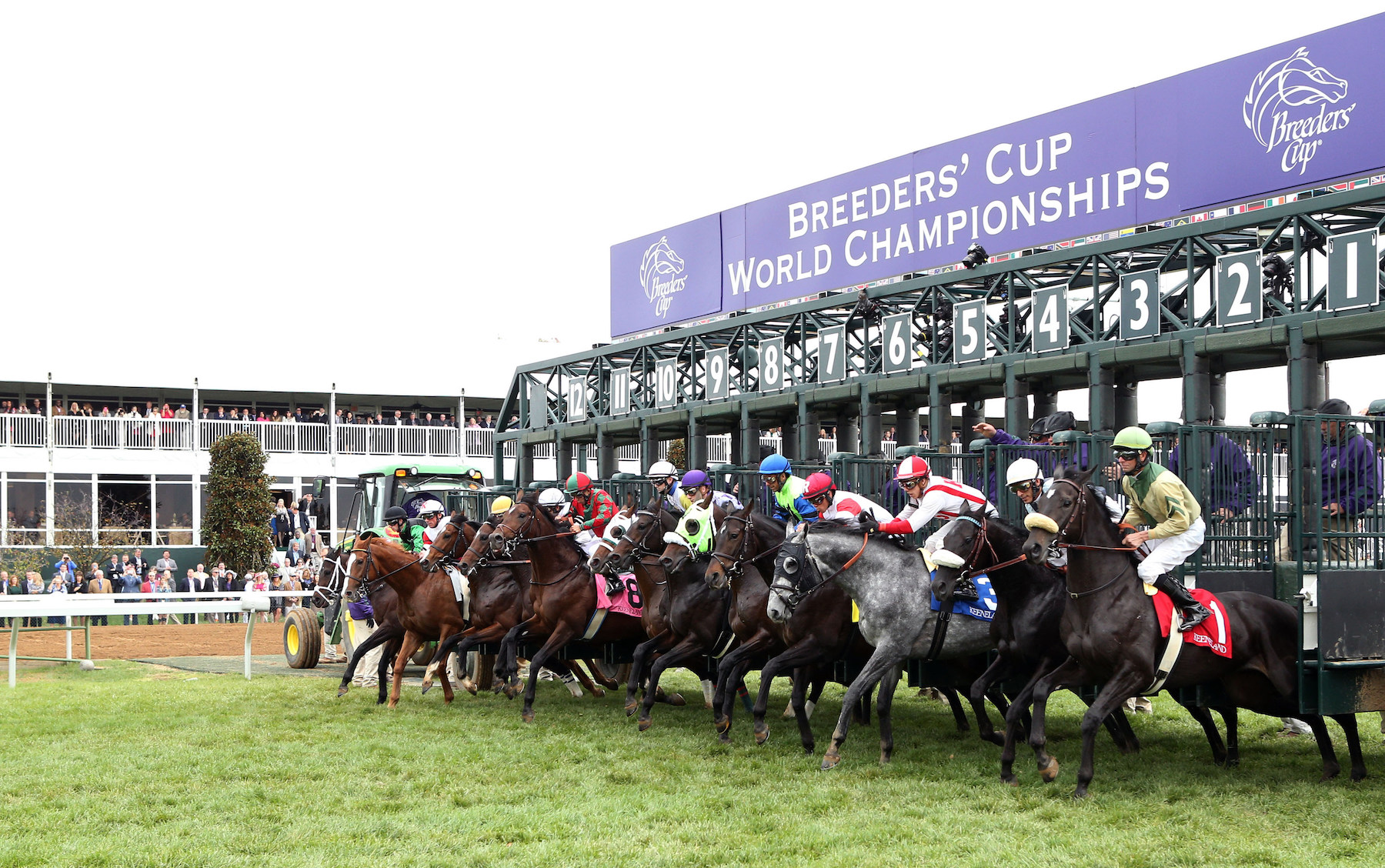 Guide to horse racing betting websites best online sports betting sites for us