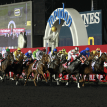 2019 Dubai World Cup Betting Preview, Odds And Picks
