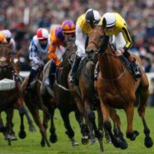 Royal Ascot Betting Preview Odds And Tips