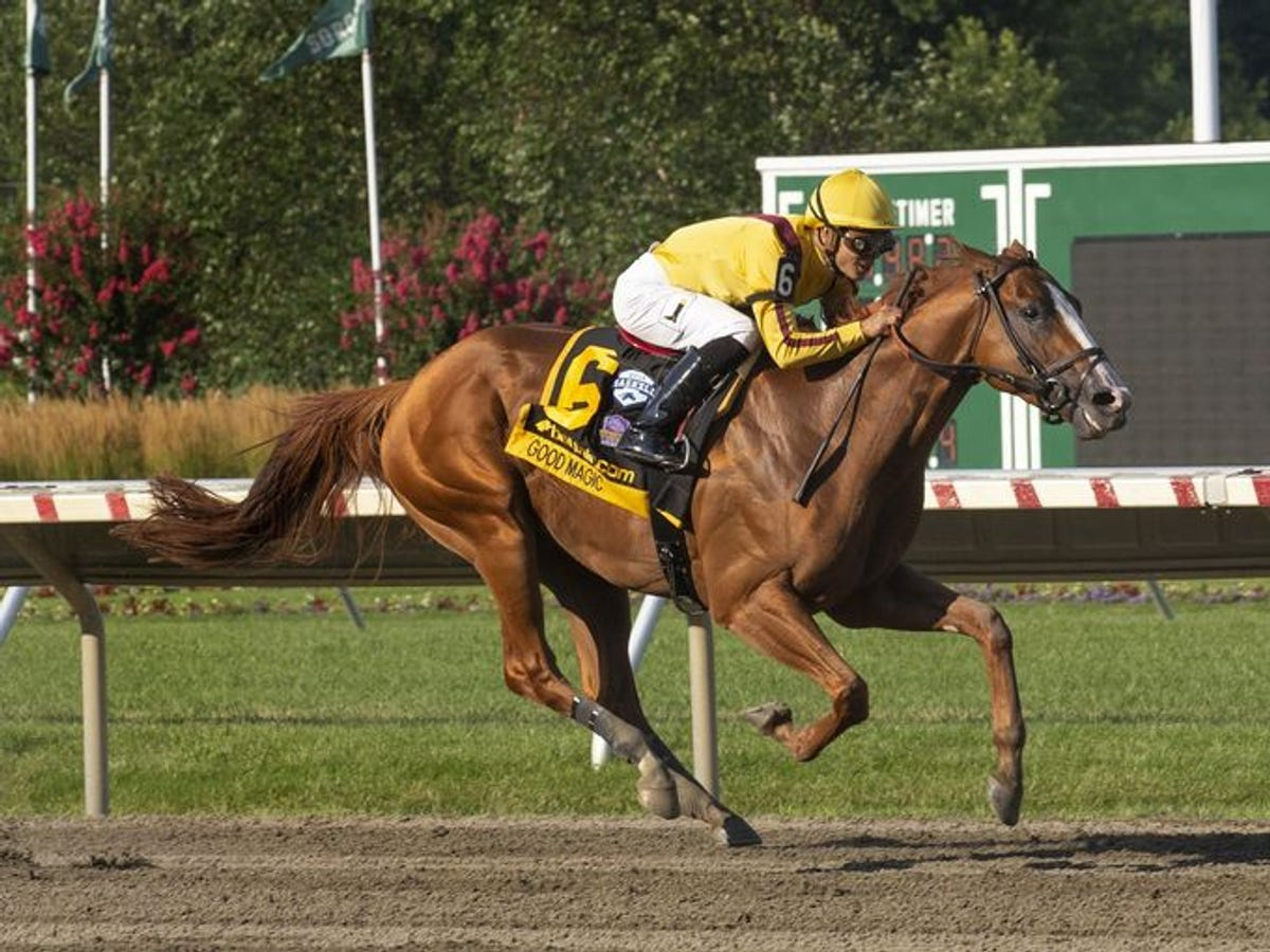 2019 Travers Stakes (G1) Horse Racing Betting Preview & Odds