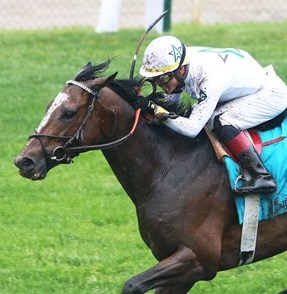Woodward Stakes Odds and Betting Preview - Yoshida