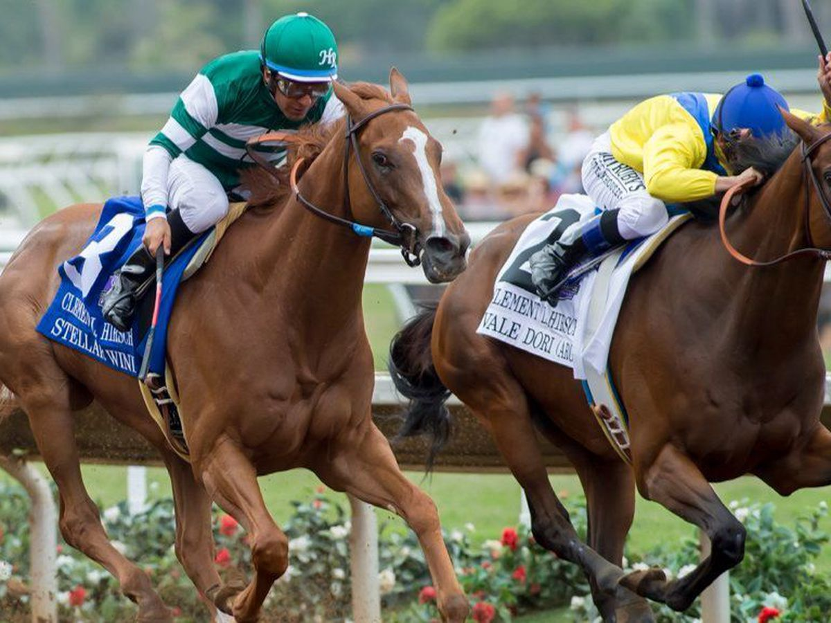 Woodward Stakes Odds and Betting Preview