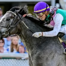 Tacitus – Jockey Club Gold Cup (G1) Betting Preview, Odds & Analysis