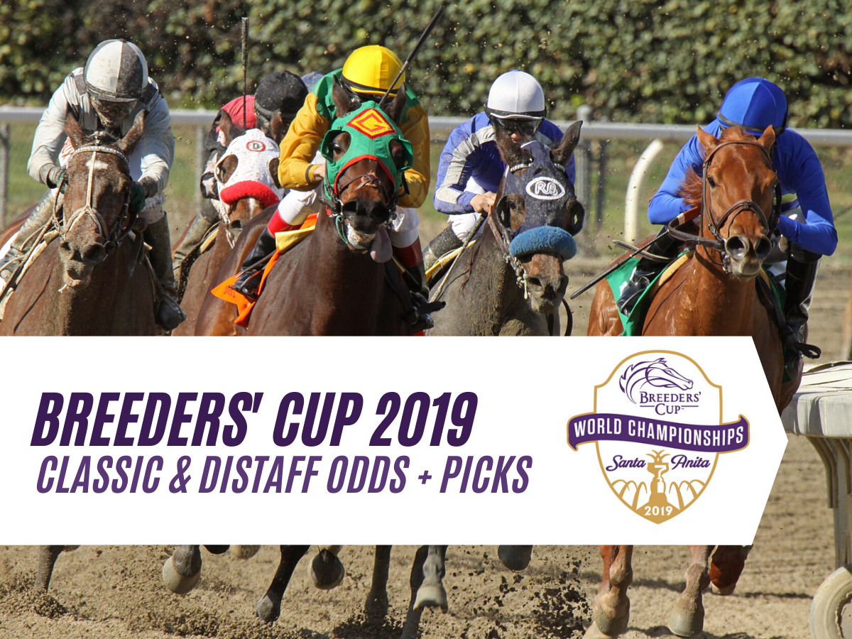 Breeders Cup Classic & Distaff Odds & Expert Analysis
