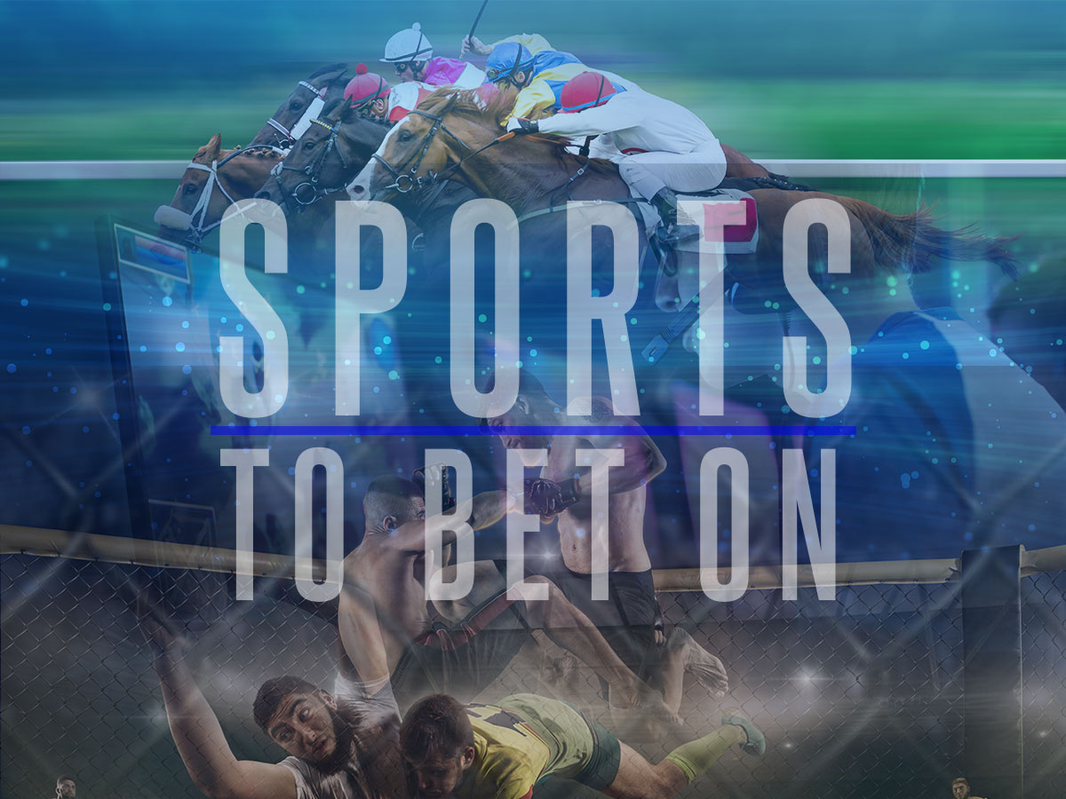 sports you can bet on