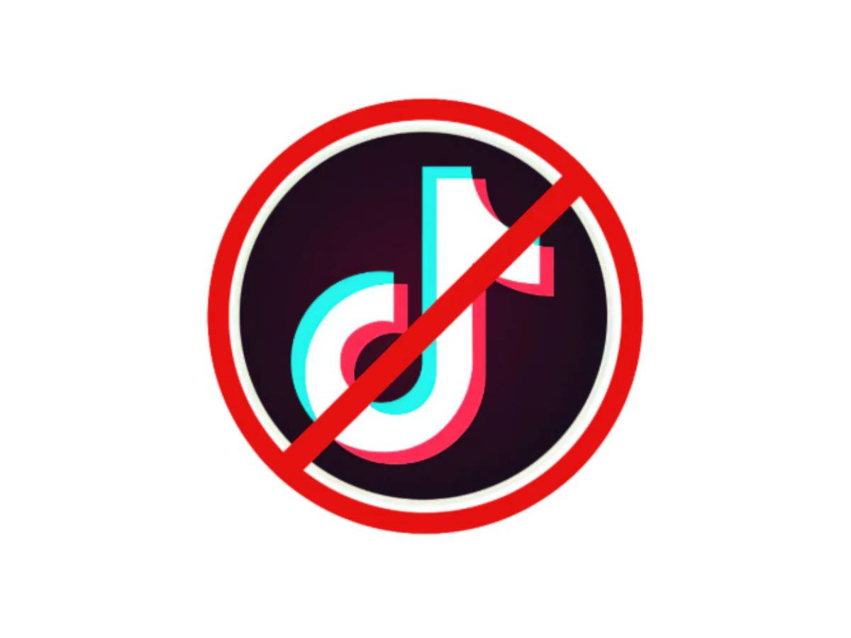 Will TikTok Be Banned In The U.S. Before 2021?
